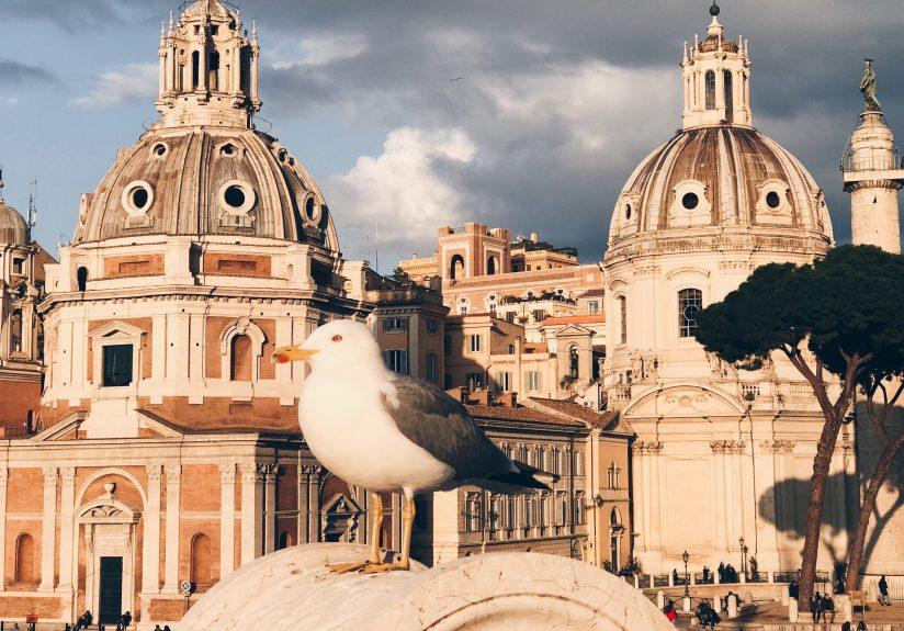 48 Saatte Roma